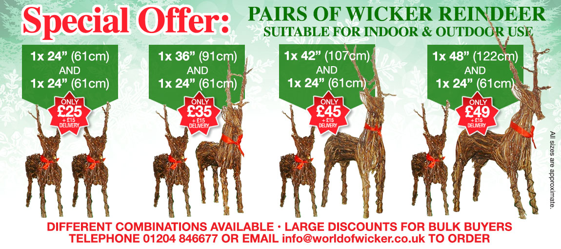 Christmas Reindeer Special Offer